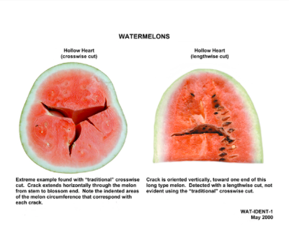 depiction of hollow-heart watermelon with worded explanation